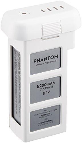 DJI Phantom 2 & Vison 1 Ersatzakku (5200 mAh)